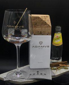 gin adamus e tonica