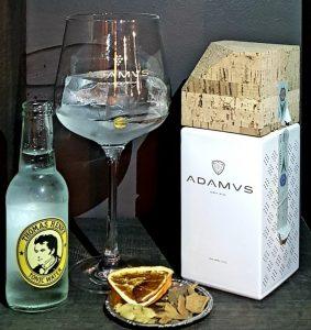 Aperitivo a Lecco con Gin Adamus